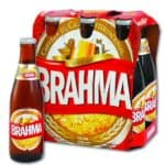 Brahma Beer Brazil - South American Beers 2019