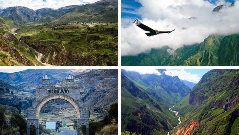 Colca Canyon Full Day Tour photo gallery