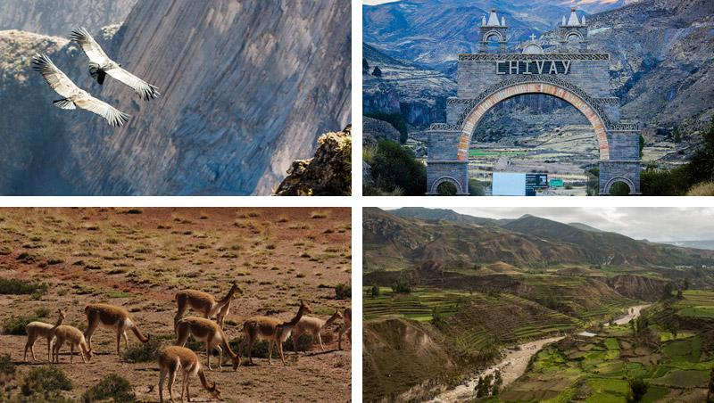 colca canyon 3 day trek photos