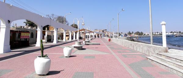 Vendimia - Playa Del Chaco