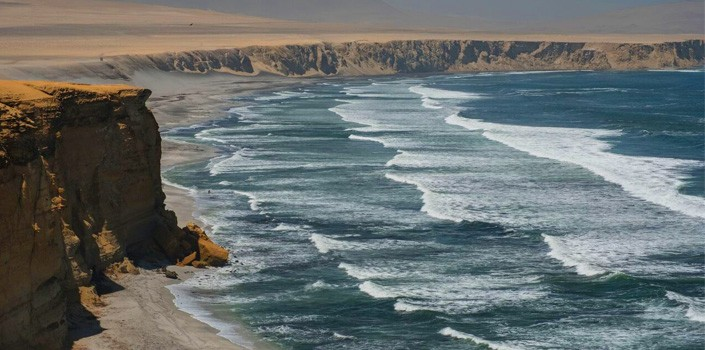 Top 10 Tips - Paracas National Reserve