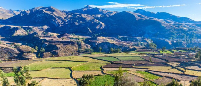 Colca Canyon 2 Day Trek Guide 2019