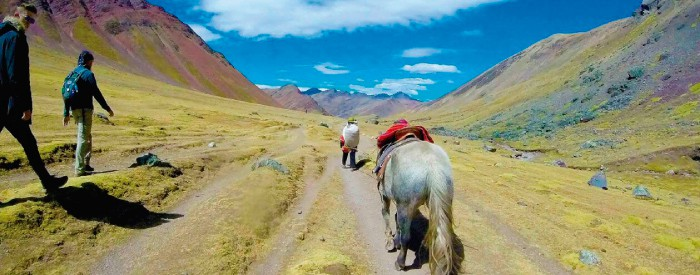donkey-walking-along-rainbow-mountain