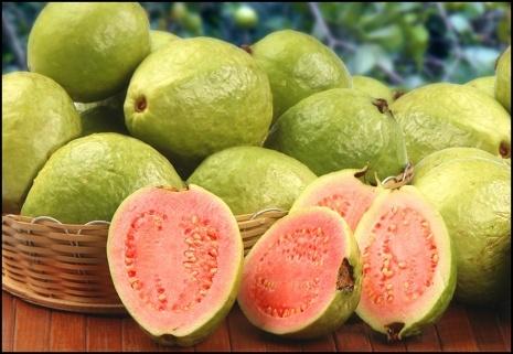 Frutas Peruanas - Guava Goiaba