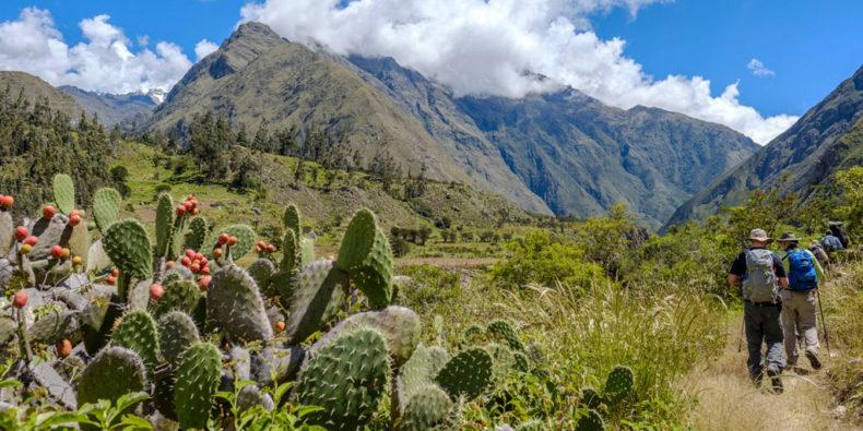 Groupe de marcheurs sur le Chemin de l'Inca (Inca Trail).