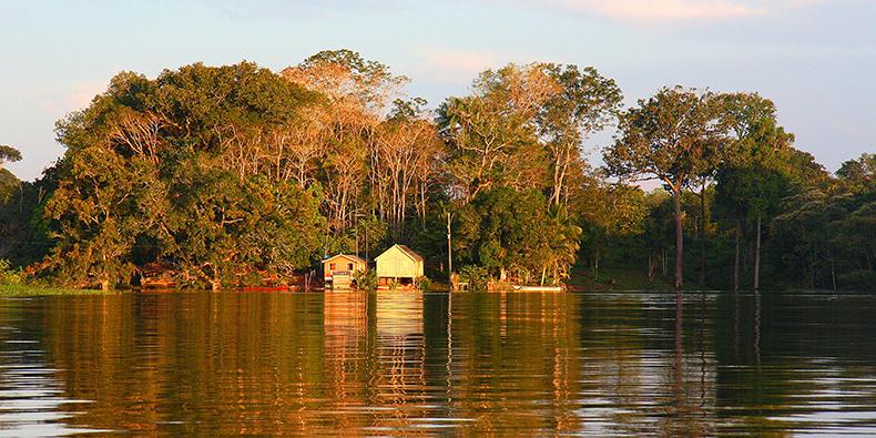 landscape of iquitos