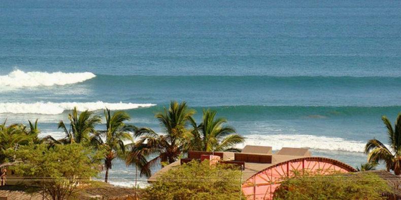 Vue sur la plage de Los Organos avec ces cocotiers et ses vagues.