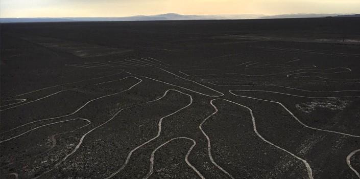 nazca-lines-tower-tree
