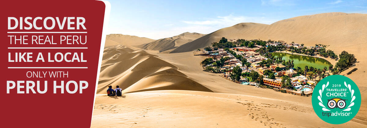 A couple of backpackers looking at Huacachina desert oasis in Peru