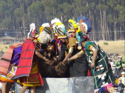 Inti Raymi Festival - Llama being sacrificed