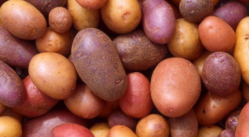 Fighting Altitude Sickness - Potatoes