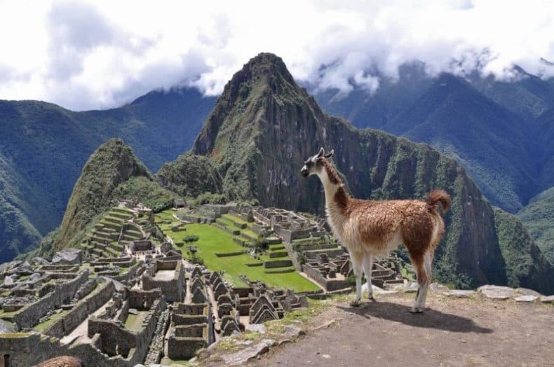 Llama and Machu Picchu Facts